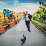 Съемка свадьбы у профессионального фотографа
