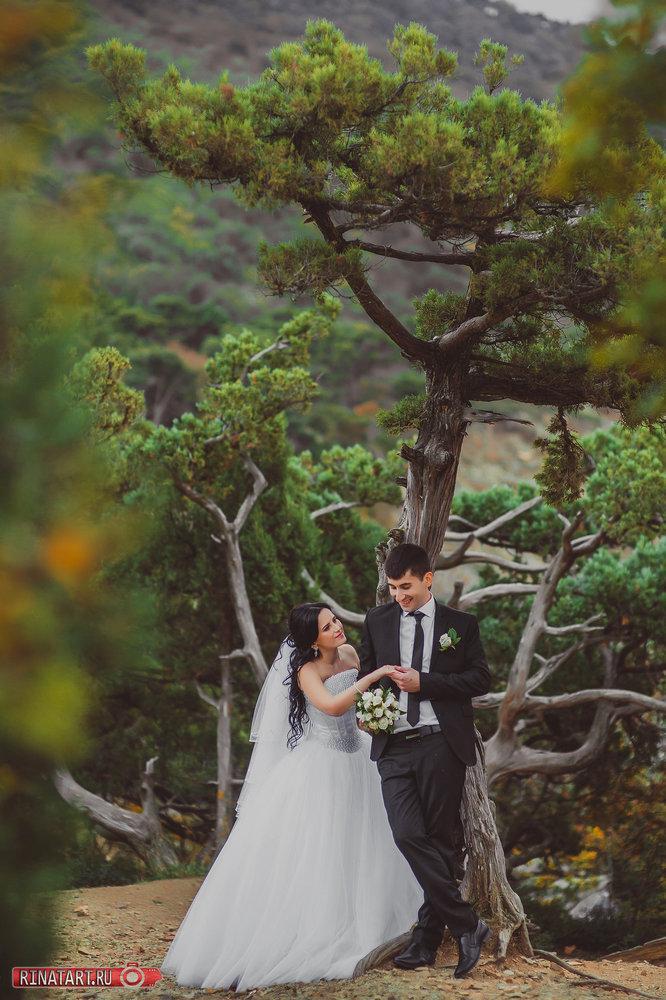 фото свадьбы от профиссонала