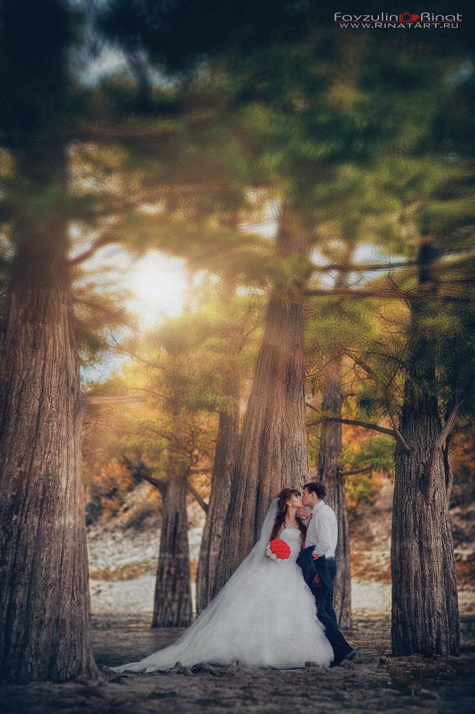 место для свадебного фото