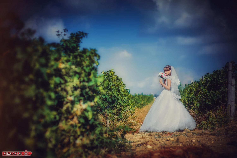 Места прогулок для свадебной съемки жениха и невесты